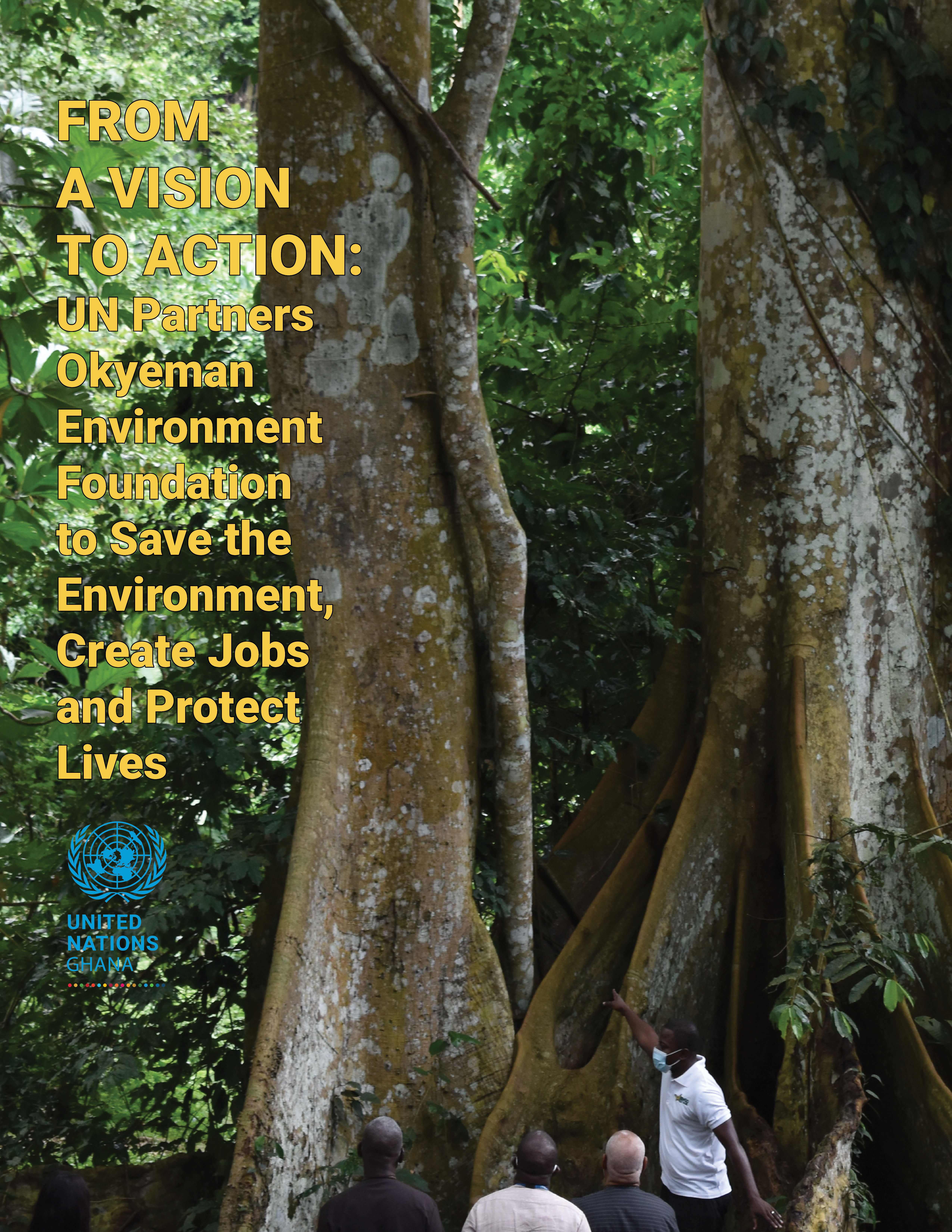 From a Vision to Action: UN Partners Okyeman Environment Foundation to Save the Environment, Create Jobs and Protect Lives
