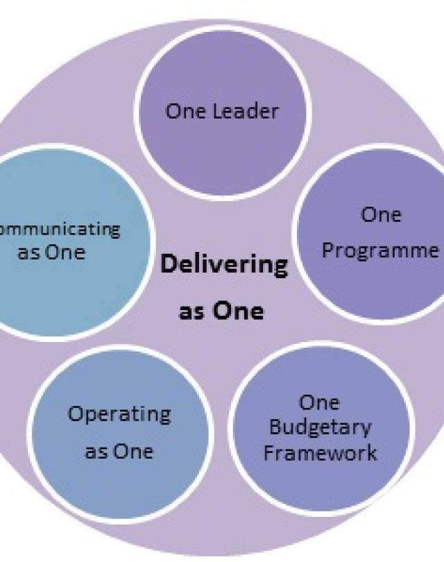 The Delivering as One structure